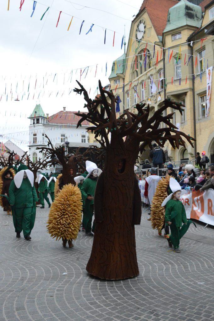 Ptujski karneval (44 of 48)